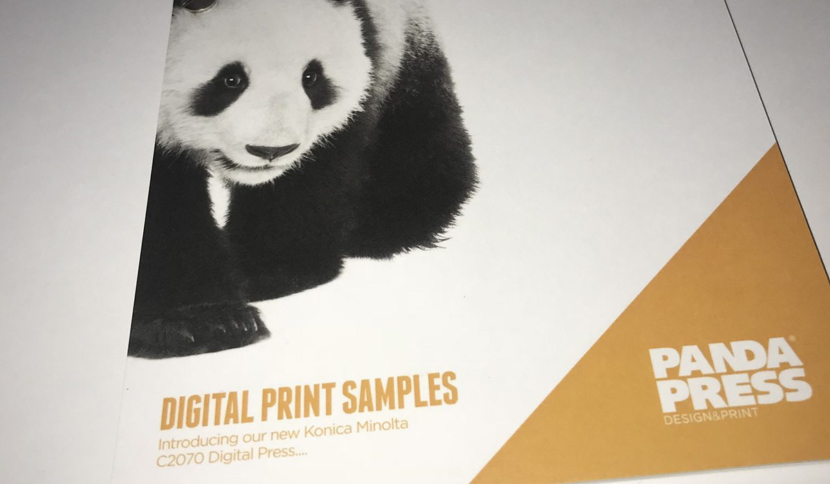 Panda Press digital print sample book